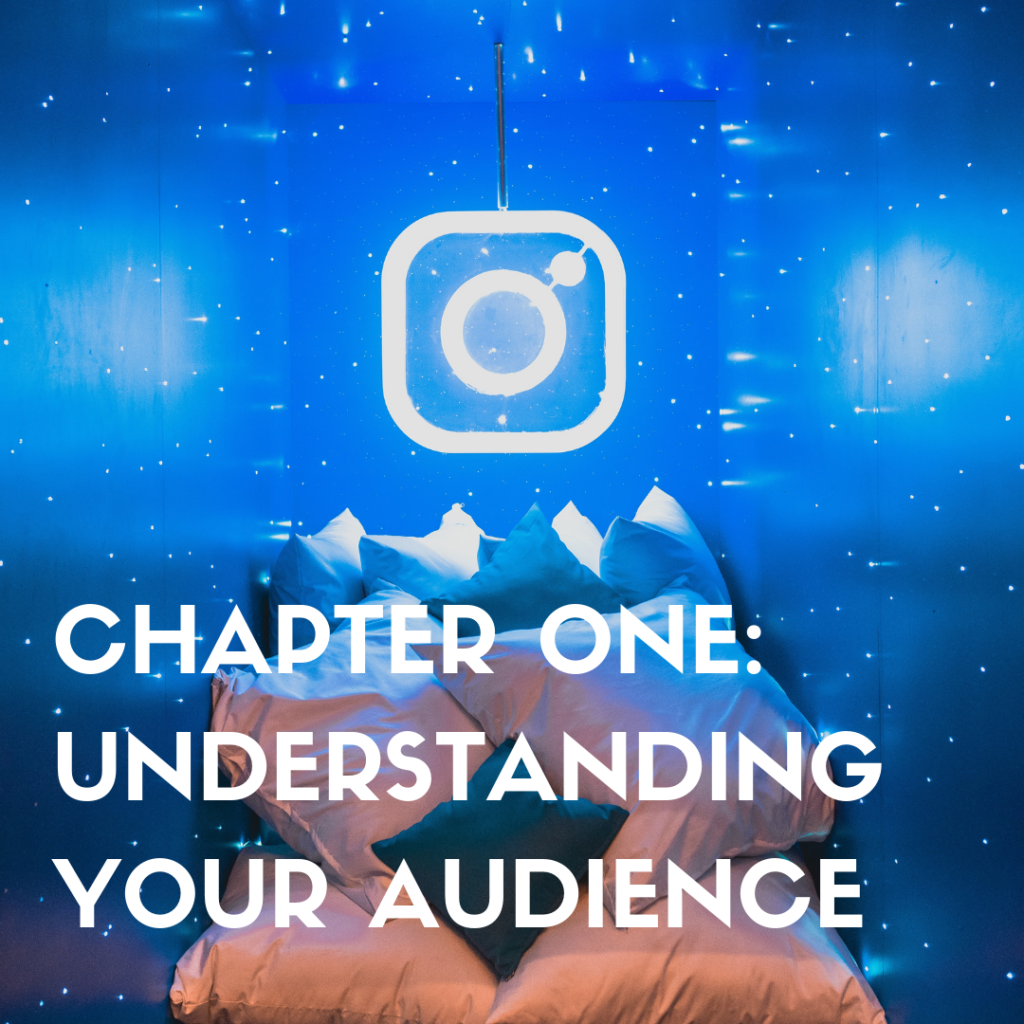 chapter one understanding your audience via wit and travesty